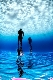 Master Freediving Instructor